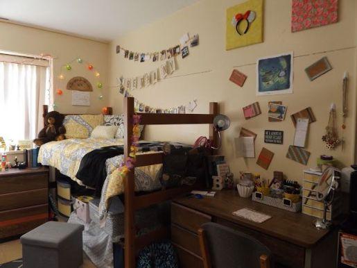 4529176f61481fdd417bdaf1b6af930e--app-state-dorm-room-appalachian-state-university-dorms